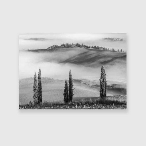 Obraz z motywem mgły do pokoju