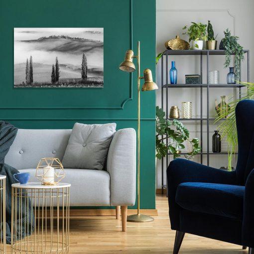 Obraz z motywem mgły do salonu